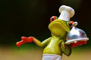 frog-926232_1920